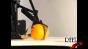 Orange cleaver - 420fps Image