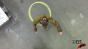 Oval Hula-hoop Test Image