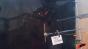 Frozen Raspberry - Pellet Gun - Test Image