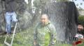 White Rain Test Sequence Image