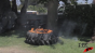 Nike Tire Burn Test Image