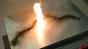 Smokeless gunpowder burning test 2  - 120fps Image
