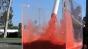 Fluid Test 1 Image