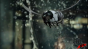 Jack Daniel's - 'Swarm' Image