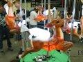 Reindeer Carousel Image