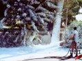 Snow Foam Image