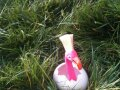 Swiffer Flamingo Shoot Image